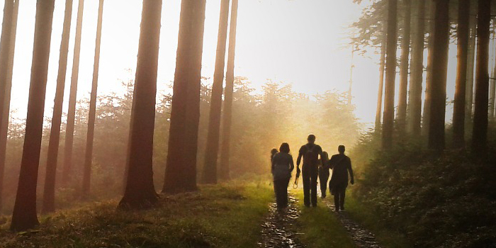 Family walking together through a nature trail