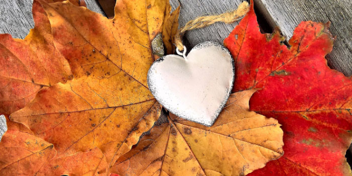 Metal heart necklace over a backdrop of fall leaves