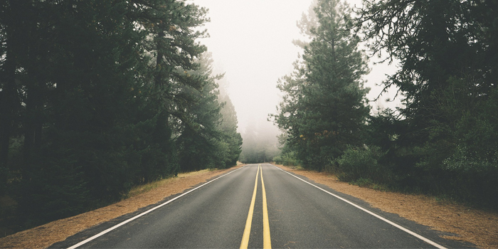 Road going into the fog
